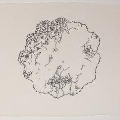 Merletti Dopo No. 2 (Lonely), 2012