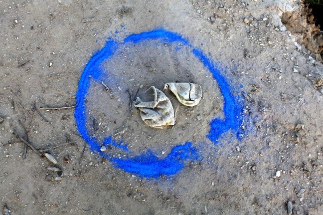 Blue Circle Intervention, Laredo, Texas, 2011